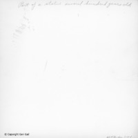 ms0470_pho_1-11-1b copy.png